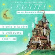 La Belle et la Bête - Le petit Poucet - Cendrillon: Contes 1