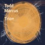 Todd Marcus - My Foolish Heart