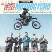 The Vicious Cycles - Tighten Everything