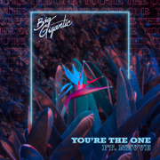 You're the One (feat. Nevve) - Big Gigantic