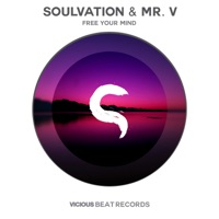 Free Your Mind (Luca Debonaire rmx) - SOULVATION - MR V