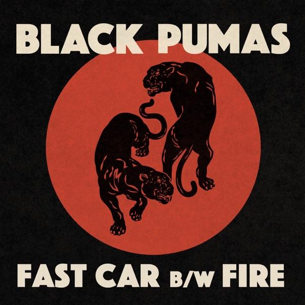 Fast Car b/w Fire - Single