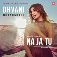 Download Mp3 Dhvani Bhanushali & Shashwat Singh - Na Ja Tu - Single