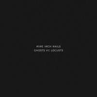 Nine Inch Nails - Ghosts VI: Locusts