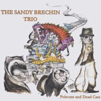 Polecats and Dead Cats by The Sandy Brechin Trio on Apple Music