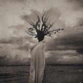 THORNAPPLE - Witchcraft