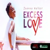 Excess Love - Single