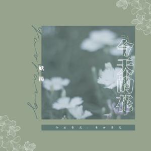 妖揚 - 今天的花