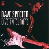 Dave Specter And The Bluebirds - West Side Stroll