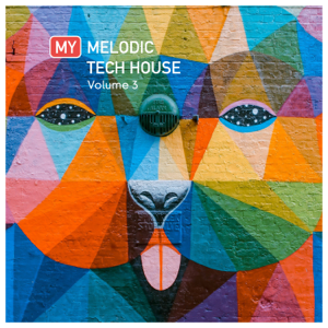 Various Artists - My Melodic Tech House Vol. 3