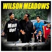 Wilson Meadows - It Ain't Rainin' On Nobody's House But Mine