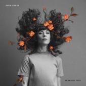 Jamie Drake - Redwood Tree
