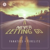Fanatics and Firelite - Never Letting Go