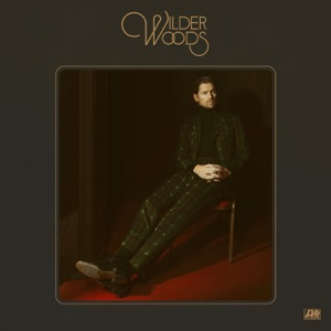 Wilder Woods - Light Shine In