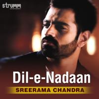 Dil-E-Nadaan - Single