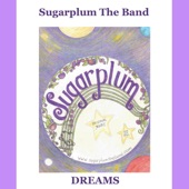 Sugarplum the Band - Seek the Truth