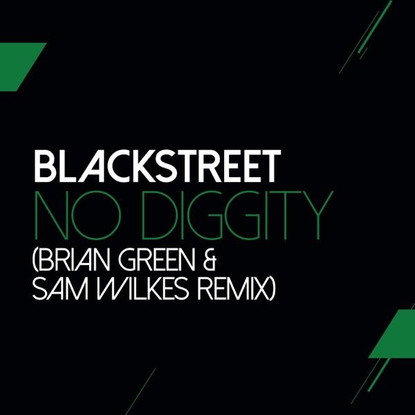 No Diggity (feat. Dr. Dre & Queen Pen) [Sam Wilkes & Brian Green Remix] - Single