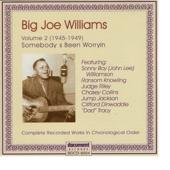 Big Joe Williams - His Spirit Lives On