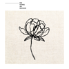 Darin - En säng av rosor artwork
