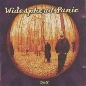 Widespread Panic - Don't Wanna Loose You