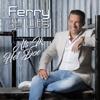 Ferry De Lits - Als Ik Het Doe kunstwerk