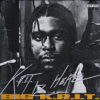 Big K.R.I.T. - K.R.I.T. IZ HERE  artwork