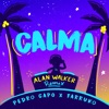 Calma Alan Walker Remix Single