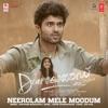 Neerolam Mele Moodum From Dear Comrade Single