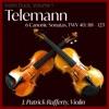 Telemann - Canonic Sonata No 1. 3 Allegro