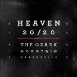 The Ozark Mountain Daredevils - Gone Long Gone
