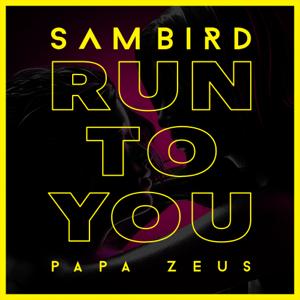 Sam Bird & Papa Zeus - Run to You