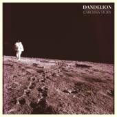Dandelion - Carolina Story