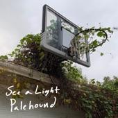 Palehound - See a Light