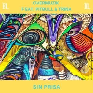 Overmuzik – Sin Prisa (feat. Pitbull & Trina) – Single [iTunes Plus AAC M4A]