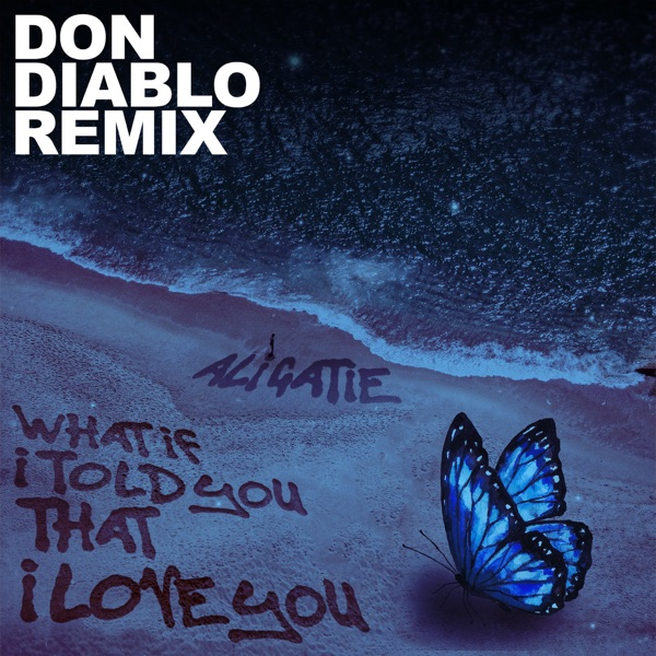 What If I Told You That I Love You (Don Diablo Remix) - Single