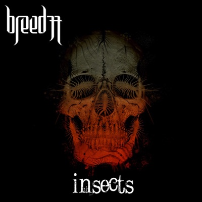 Insects - Breed 77