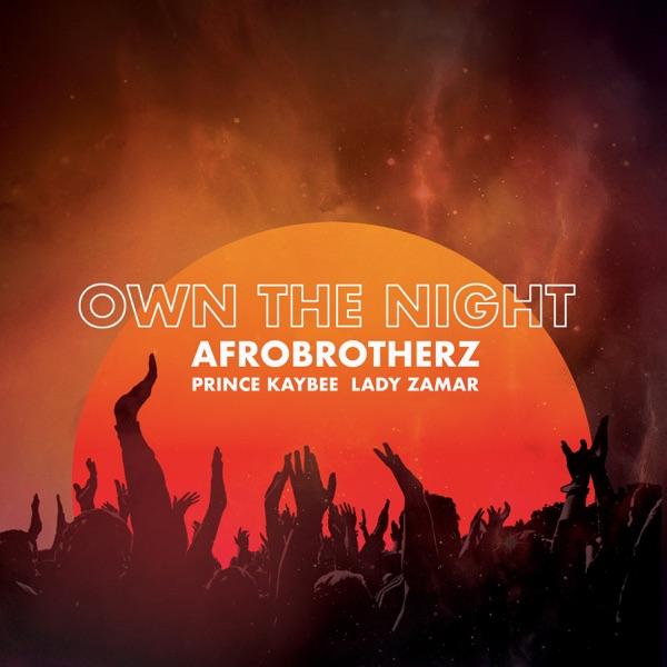 Own the Night (feat. Prince Kaybee & Lady Zamar) - Single