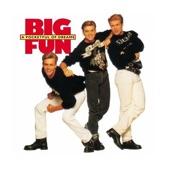 Big Fun - Blame It on the Boogie