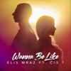 Elis Mraz - Wanna Be Like (feat. Čis T) artwork