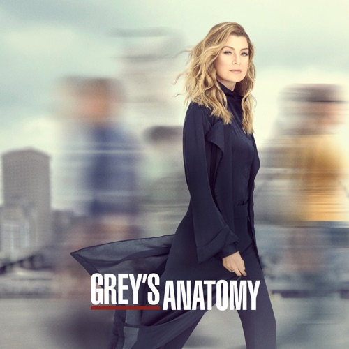 Grey's Anatomy, Season 16 poster