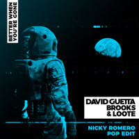 Better When You're Gone (Nicky Romero Pop Edit)-デヴィッド・ゲッタ, Brooks & Loote