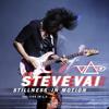 Steve Vai - Tender Surrender (Live) artwork