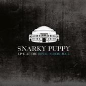 Snarky Puppy - Tarova (Live)