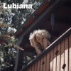 Self Love by Lubiana iTunes Track 1