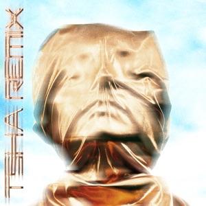 Declan McKenna - The Key to Life on Earth (TSHA Remix)
