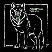 Perceptual Fallacy - Single