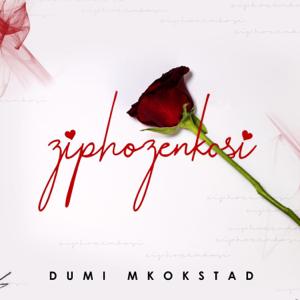 Dumi Mkokstad - Ziphozenkosi