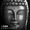 Méditation Sanctuaire de Guérison & Bouddha musique sanctuaire - # Pleine conscience: Méditation pour l'équilibre intérieur, Guérison spirituelle, Apaiser son âme