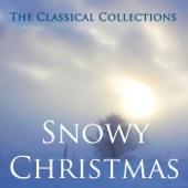 Winter - Concerto #4 in F Minor artwork