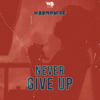 Harmonize - Never Give Up artwork